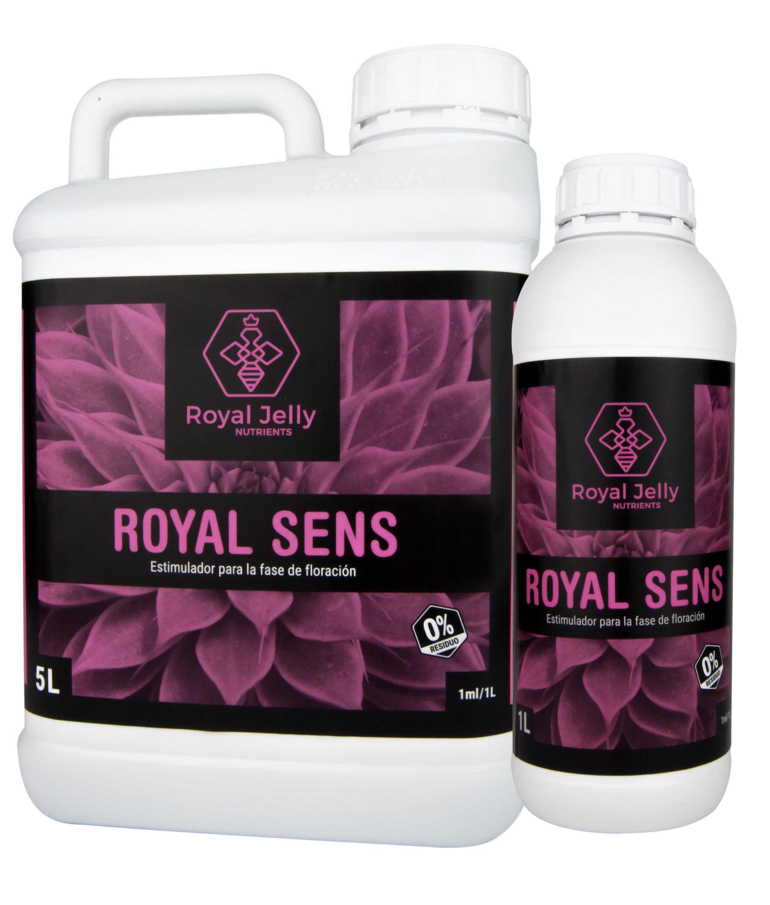 royal sens bodegó