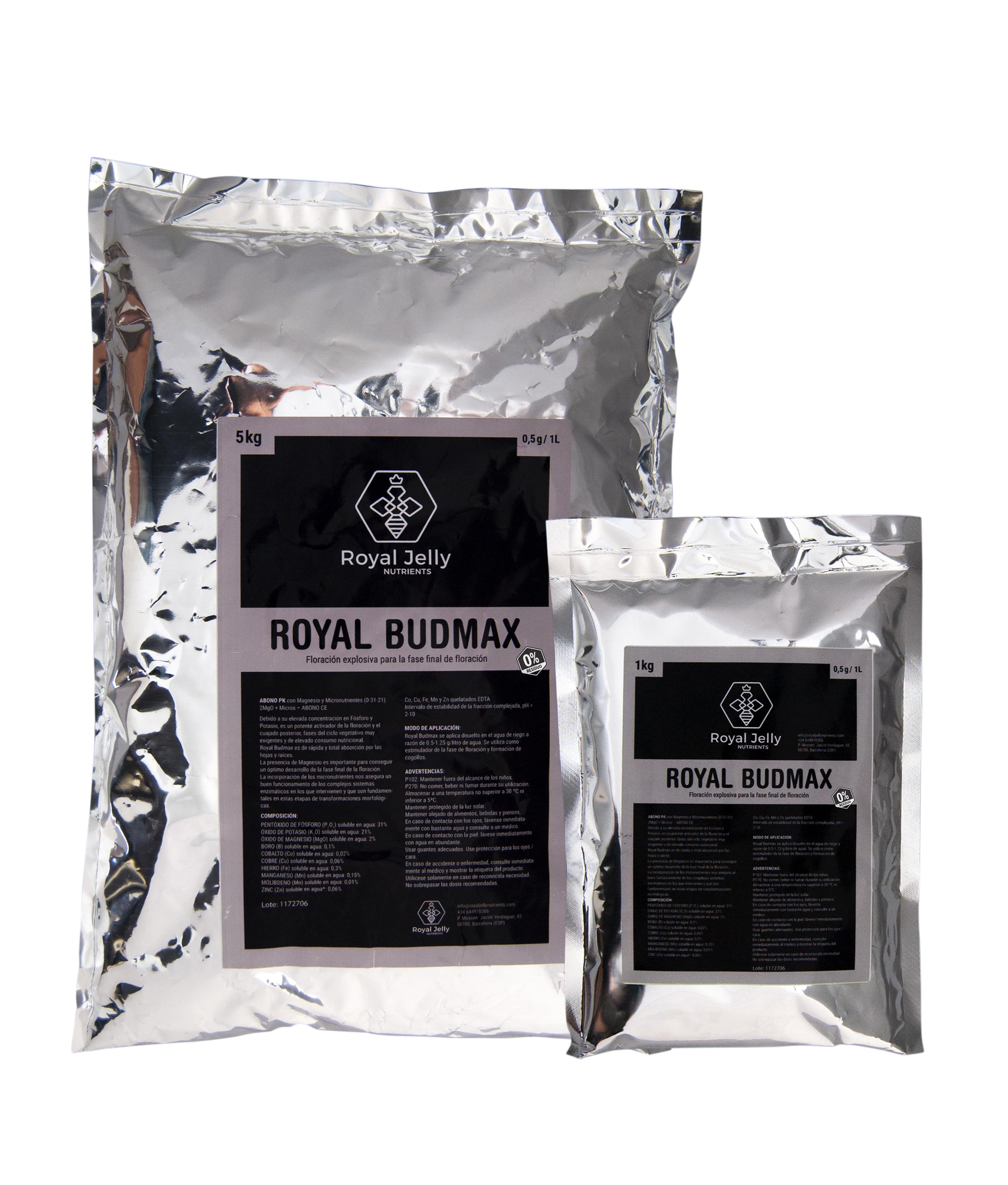 royal budamx bodegó proba